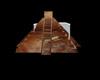 mnc aztec temple