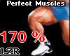Muscles Legs *PT 170%