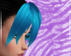Blue Rin Bangs