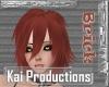 KAI Brick Annie