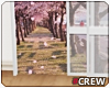 !TC! Cherry Blossom Door