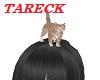 Head Cat M/F