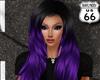 SD Balchin Black Purple
