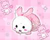bunny bag <3