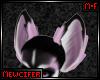 M! Laven Husky Ears