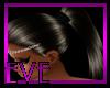 |V|DarkBrown SHIRA