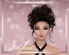 !SG Elvira Dark Auburn
