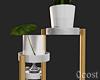 Plant Holder Deco