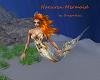 Narsiren Mermaid