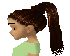 streaked brown ponytail