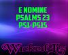 E Nomine Psalms 23