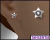 Star Studs in Moonstone