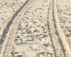 Boks Sand Print