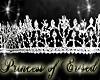 !PoE! Ophiela Crown