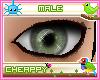 Grey Green Male Eyes