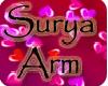Arm *Sur