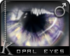 K| Opal Eyes: Purple
