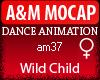 A&M Dance *Whild Child*