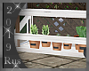Rus: Herbs/greenhouse 3