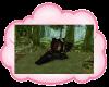 RP Castle Hidden Woods