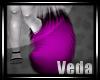 :V: Pumie Tail1::