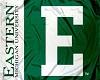 EMU Eagles Flag