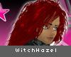 [V4NY] WitchHazel Fire