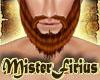 GWA Beard Auburn