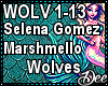 Marshmello: Wolves
