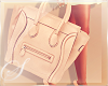 Parisian Lady's Bag