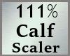 111% Calves Scale MA