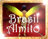 !(ALM) BRASIL WINGS ASAS