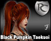 Black Pumpkin Taekuoi
