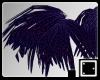 ` Paradise Feathers