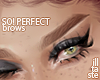 SO! Perfect. brows 04