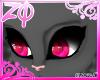 Kool | Eyes <