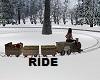 Winter Train Ride