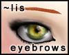Eyebrows [copper]