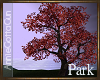 RSP Single Tree