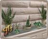 Family Wall Plants