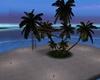 llKNZ*Little island