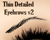 Thin Detailed Eyebrows 2