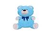 Baby Blue Teddy Bear
