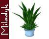 MLK Plant B