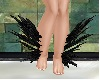 leg black feathers