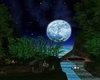 Jungle Moon Nights