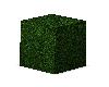 Sunny's Mod Hedge