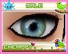 Green Blue Male Eyes