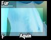 Aquin Fur F