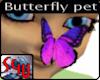 Sweet Butterfly as pet